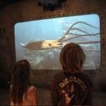 L'Océan a un corps : la base sous-marine